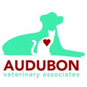 Audubon Veterinary Associates