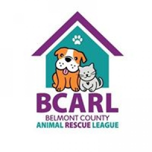 Belmont County Sheriff