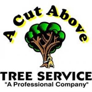 A Cut Above Tree Service