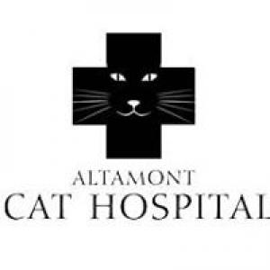 Altamont Cat Hospital