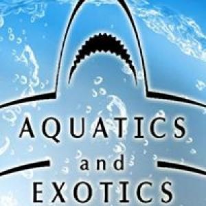 Aquatics & Exotics