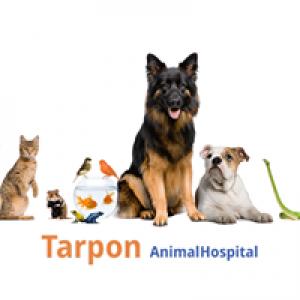 Tarpon Animal Hospital