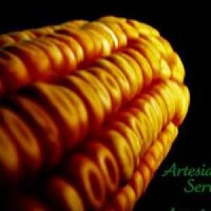 Artesian Seed Service