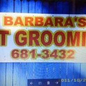 Barbara's Pet Grooming