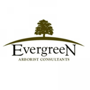 Evergreen Arborist Consultants