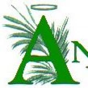 Angel Plants Inc