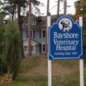 Bayshore Veterinary Hospital