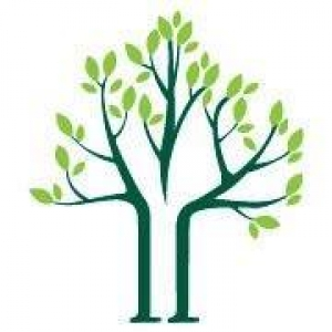 Arbor Tech Tree Care