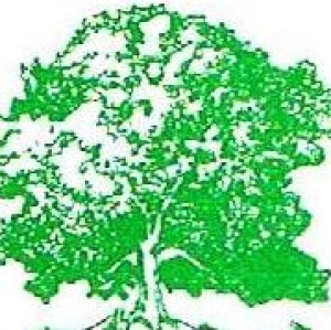 Bell's Tree Service