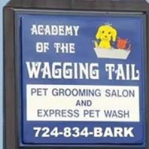 Academy Of The Wagging Tail