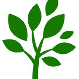 R&J Tree & Lawn LLC