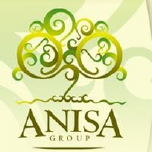 Anisa Counseling Group