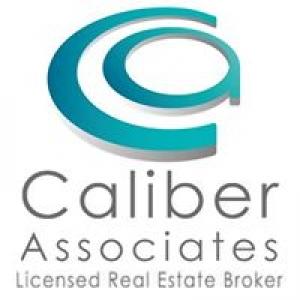 Caliber Associates