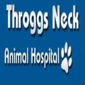 Animal Clinic & Surgery Of Throggs Neck Pc