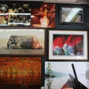 Decor Art Gallery