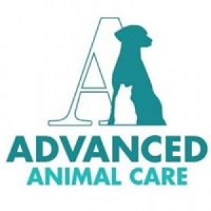 Advanced Animal Care