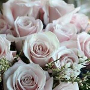 Belmar Flower Shop