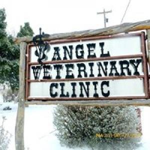 Angel Veterinary Clinic & Hospital
