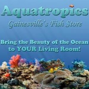 Aquatropics