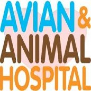 Avian & Animal Hospital LLC
