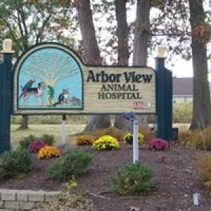 Arbor View Animal Hospital