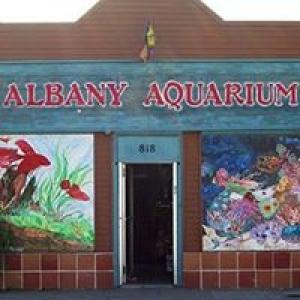 Albany Aquarium