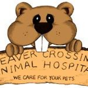 Beaver Crossing Animal Hospital