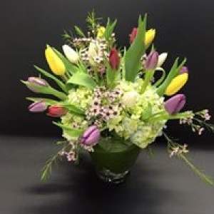 A Plus Flowers And Gifts