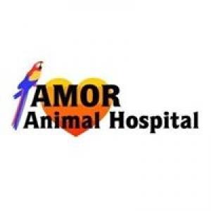 Amor Animal Hospital & Pet Resort & Training Center