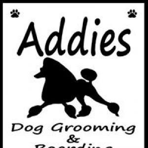 Addies Dog Grooming