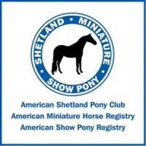 American Shetland Pony Club