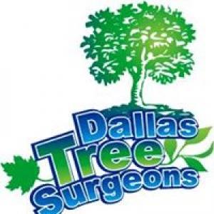 Dallas Tree Surgeons Inc