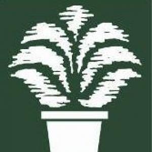 Bennetts Creek Wholesale Nursery Inc