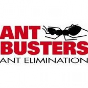 Antbusters