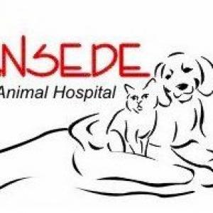 Ansede Animal Hospital