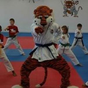 Auburn Academy of Martial Arts