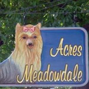 Acres Meadowdale Animal Inn