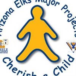 Arizone Elks Major Projects Inc