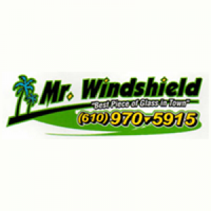 Mr Windshield