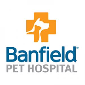 Banfleld The Pet Hospital