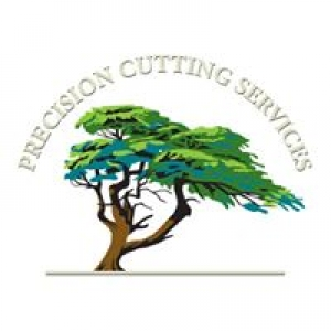 Precision Cutting Services
