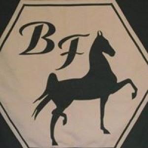 Bellaire Farms Inc