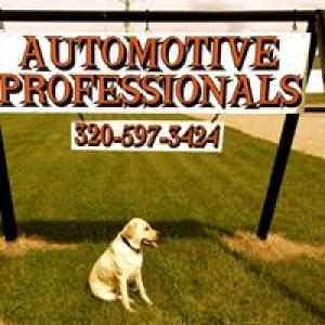 Automotive Professionals Inc
