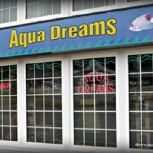Aqua Dreams Aquariums
