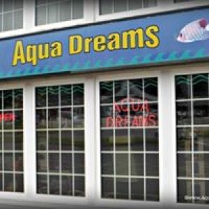 Aqua Dreams Aquariums