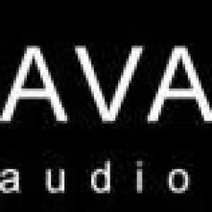 Ava Design Group Inc