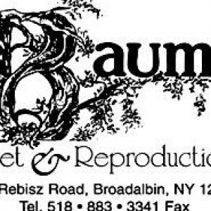 Baum's Cabinet & Reproduction Co