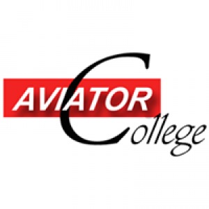 Aviator Inc