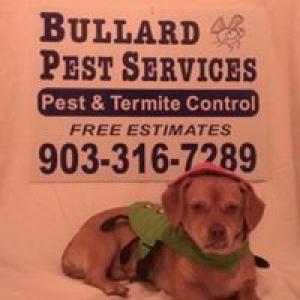 Advanced Termite & Pest Control