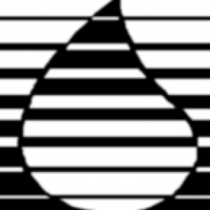 Bazell Oil Co Inc